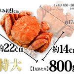 ボイル毛ガニ姿 特大 約800g1尾 北海道産 北海道海鮮工房