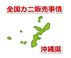 沖縄 カニ