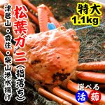 カニ通販レビュー 朝市広場 日本海の松葉ガニ、セコガニ、紅ズワイガニを揃えているショップ