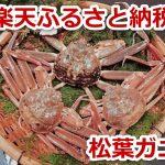 楽天ふるさと納税で鳥取県岩美町の松葉ガニや親ガニがもらえます!