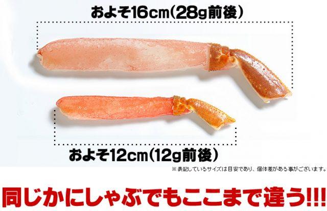 ズワイガニ足ポーションのサイズ比較
